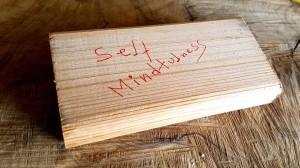 Self Mindfulness